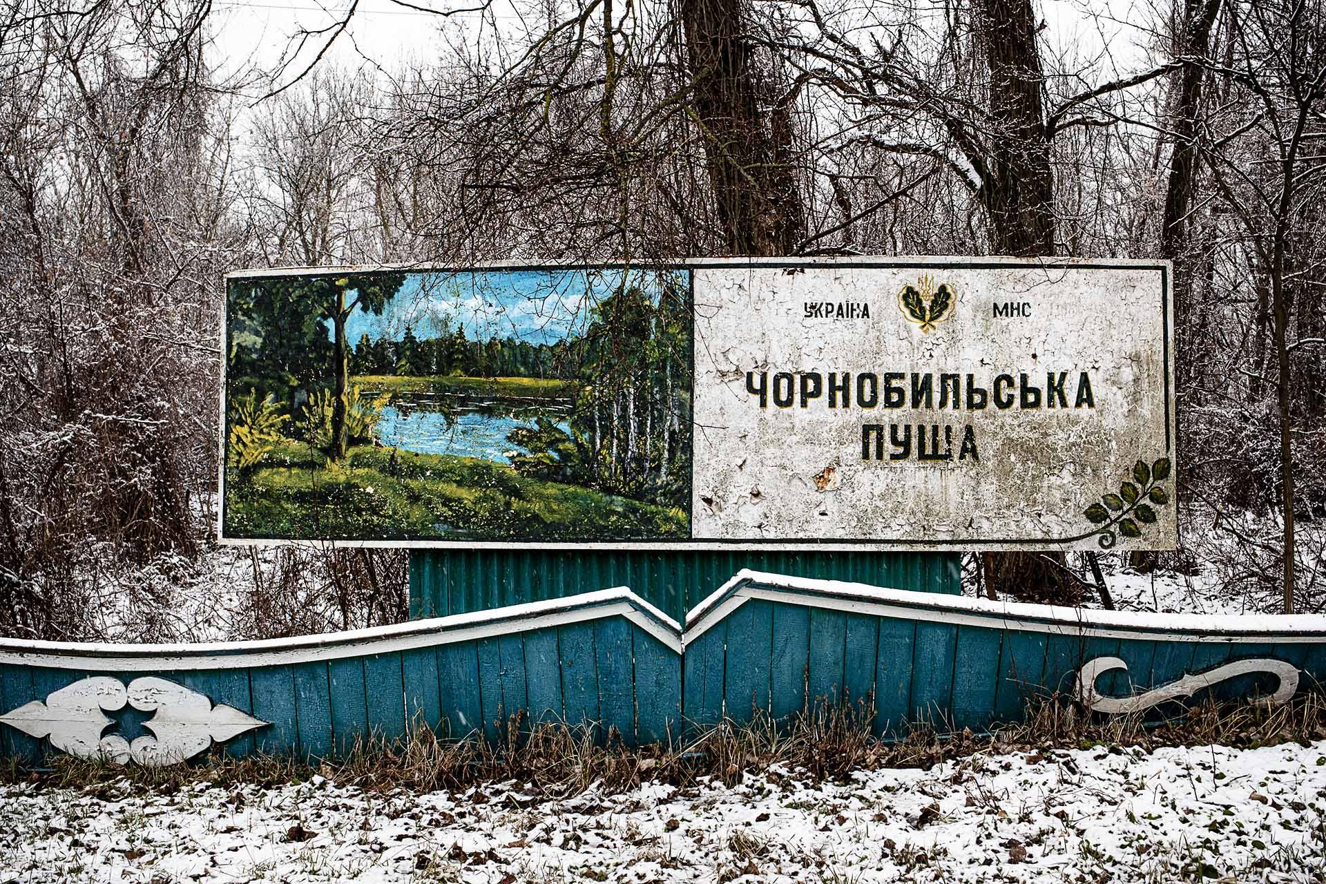 """Una de las muchas """"zonas verdes"""" abandonadas que ahora se mezcla con el resto de la naturaleza."""