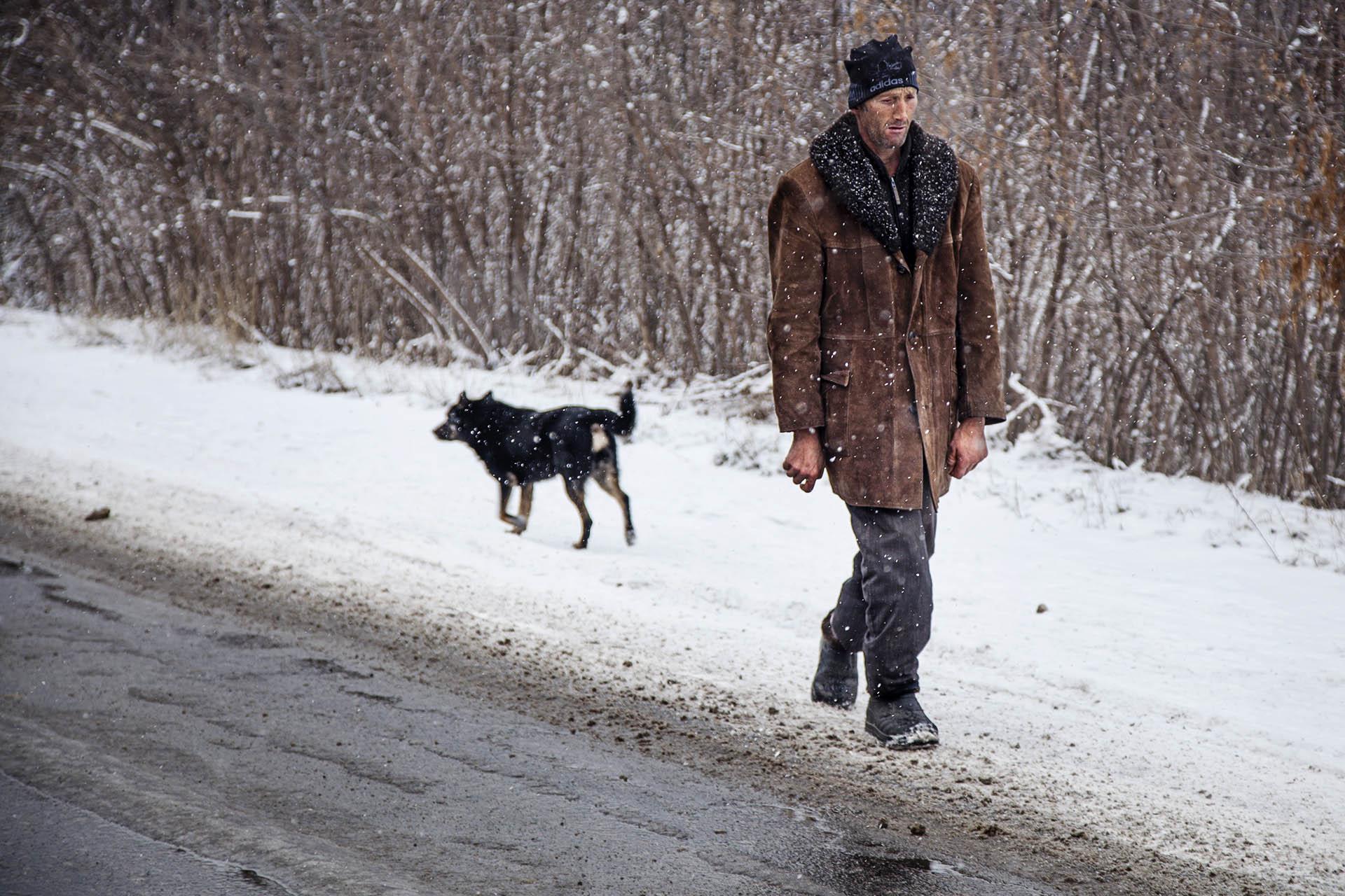Los perros tienen más libertad de movimiento que las personas en esta zona.